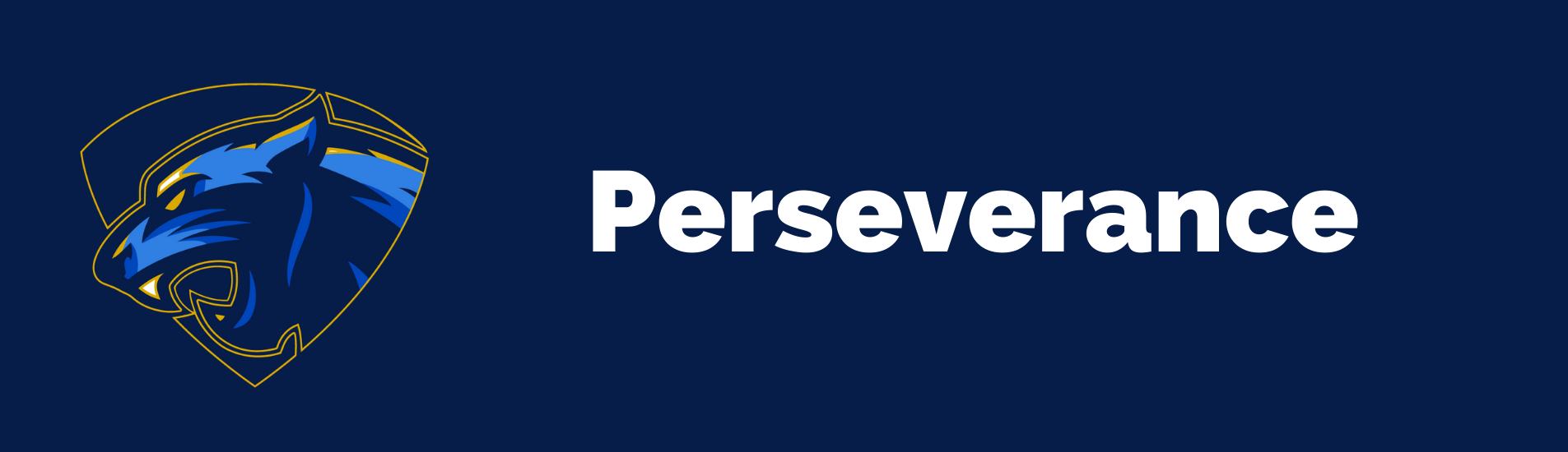 Perseverance value banner